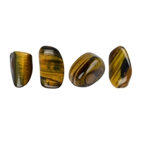 Tumbled Stones Tiger's Eye (gold), 1,5 - 2,0cm (S)