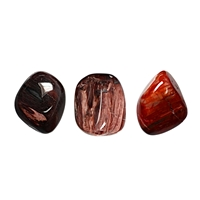 Tumbled Stones Petrified Wood, 2,0 - 2,5cm (M)