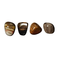 Tumbled Stones Petrified Wood, 1,5 - 2,0cm (S)
