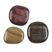 Smooth Stones Petrified Wood