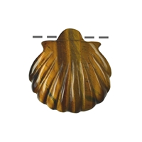 Shell Tiger's Eye drilled, 4cm