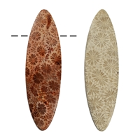 Cabochon Navette slim Petrified Coral drilled, 5,5cm