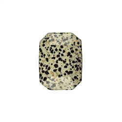 Flatstone Dalmation Stone