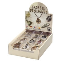 "Pop-Up Display ""Pendants Fossils"" (18 boxes)"