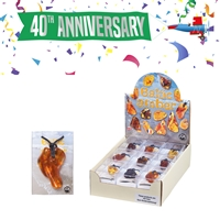 "Pop-Up Display ""Amber drilled"" appr. 55mm (18 boxes)"