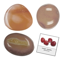 Refill pack Tumble Stones, 24 pieces Carnelian with accessoires