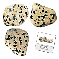 Refill pack Tumble Stones, 24 pieces Dalmation stone with accessoires