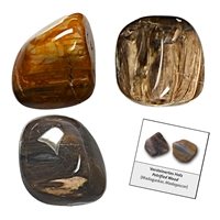 Refill pack Tumble Stones, 24 pieces Wood petrified with accessoires