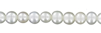 String round, Freshwater Pearl A, white, 08 - 08,5mm