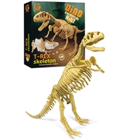 Grabungs-Set T-Rex